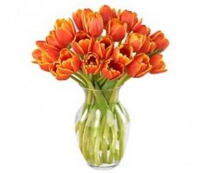 Ramo de 20 Tulipanes Naranjas