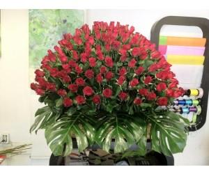 Explosión de Amor (250 Rosas & Canasta)