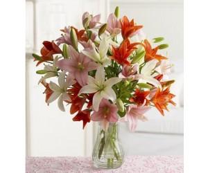Ramo de Lilis Multicolores