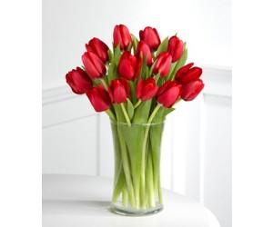 Ramo de 15 Tulipanes Rojos